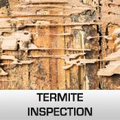 termite inspection commercial pest control
